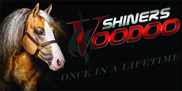 SHINERS VOODOO
